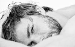 Slaap van het mensen ontspant de ongeschoren gebaarde gezicht of ontwaakt enkel Ontspant de kerel gebaarde macho in ochtend Het t royalty-vrije stock afbeeldingen