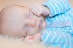 In slaap zuigeling royalty-vrije stock foto