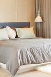 Slaapkamer van de luxe de moderne stijl Stock Foto