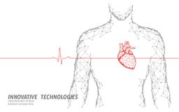 Slaat het gezonde hart van het mensensilhouet 3d geneeskunde model lage poly Driehoek verbonden het punt van de puntengloed onlin royalty-vrije illustratie