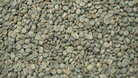 Slabonen van arabica koffieclose-up Het proces om organische koffie te produceren Een Stapel van Koffiebonen r stock footage