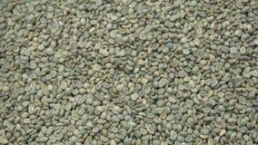 Slabonen van arabica koffieclose-up Het proces om organische koffie te produceren Een Stapel van Koffiebonen r stock videobeelden
