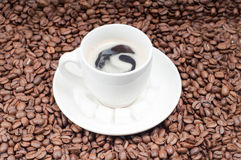 Slabs of shugar and cup of coffee Stock Photos