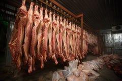 slachthuiskoeien, die op haken in de koude helft koeien hangen Royalty-vrije Stock Afbeelding