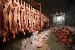 slachthuiskoeien, die op haken in de koude helft koeien hangen Royalty-vrije Stock Foto's
