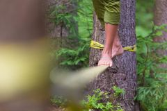 Slack line in the nature. Stock Photos