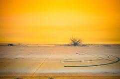 Sladdningfläckar med gul himmelinfrared royaltyfria bilder