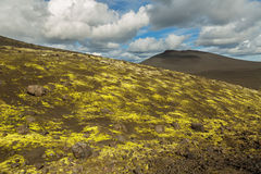 Slag fields and cones covered with moss. North Breakthrough Great Tolbachik Fissure Eruption 1975 Stock Photography
