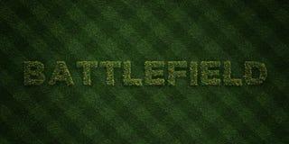 SLAGFÄLT - nya gräsbokstäver med blommor och maskrosor - 3D framförd fri materielbild för royalty Arkivfoto