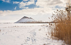 Slagheap winter in the snow Royalty Free Stock Photography