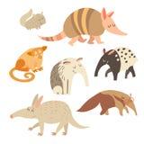 Slagskepp myrslok, chinchilla, tapir, myrslok, kinkajoudjur på vit bakgrund också vektor för coreldrawillustration stock illustrationer
