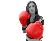 slagsmål som är klart till Fotografering för Bildbyråer