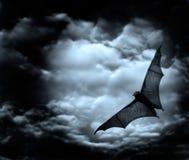 Slagträflyg i den mörka skyen Royaltyfri Bild