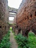 Slains slott, Skottland Royaltyfri Bild