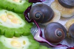Slak en bittere citroen op schotel Stock Afbeelding