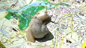 Slak met shell lopen, die door de kaart, reisconcept, het langzame drijven kruipen stock videobeelden