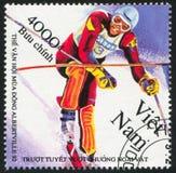 slalom Imagens de Stock Royalty Free