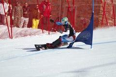 Slalom gigante paralelo do Snowboard fotografia de stock royalty free