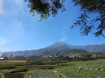 Slamet Mountain Photos stock
