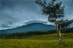 Slamet Mountain Stock Image