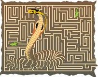 Slang in het labyrint Stock Afbeeldingen