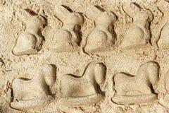 Slang och kanin av sanden Arkivfoto