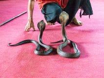 Slangenbezweerder Stock Afbeelding