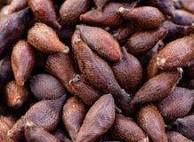 Slangfruit Exotische vruchten royalty-vrije stock afbeelding