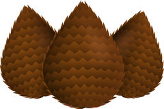 Slangfruit Salak royalty-vrije stock foto