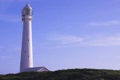 slangkop latarni morskiej. Zdjęcia Royalty Free