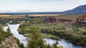 Slangrivier in Idaho stock foto's