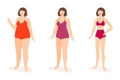 slank kvinna för fett vektor Royaltyfria Foton