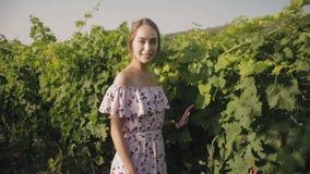 Slank meisje in de zomer sundress in wijngaardenrangen stock footage