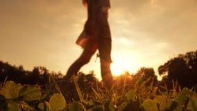 Slank suddig barfota flicka som korsar ramen som rymmer hennes skor för hög häl i hennes hand, gem 4K Orange solnedgångfärger lager videofilmer