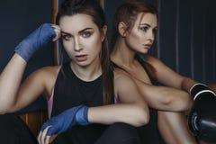 Slanka unga härliga brunettkvinnor för passform som boxas i sportswear Da royaltyfria bilder
