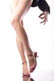 Slanke benen van een geschikte dame stock fotografie