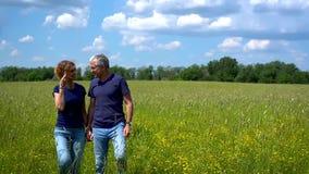 Slanke man en vrouw die en de weide met hoog groen gras op een duidelijke zonnige dag koesteren bewonderen stock video