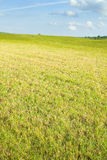 Slanted meadow Stock Photography