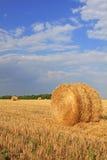 Slanted straw Stock Photography