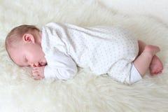 Slapend 3 weken pasgeboren meisjes Royalty-vrije Stock Afbeeldingen