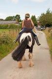 Slapende poney Royalty-vrije Stock Foto's