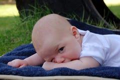 Slaperige Baby in het Park Stock Afbeeldingen