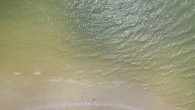 Slapp wave av havet på den sandiga stranden Våg på linjen för havskust och en härlig sandig strand arkivfilmer