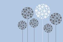 slappa blommor Arkivfoton