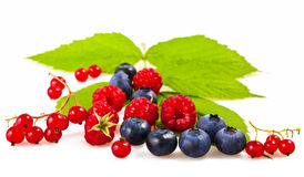 slappa frukter Arkivbilder