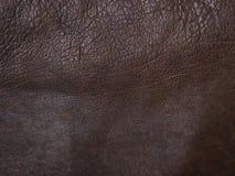 slappt brunt läder Arkivbilder