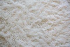 Slappt den vita mattan för ull royaltyfria bilder