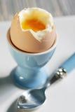 slappt kokt ägg Royaltyfri Fotografi