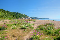 Slapton Sands, Devon Royalty Free Stock Images