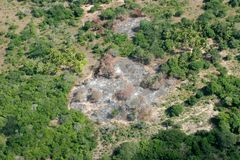 Slash-and-burn. Agricultural practice - cutting and burning of forests to create fields, Mozambique, southern Africa Stock Photography